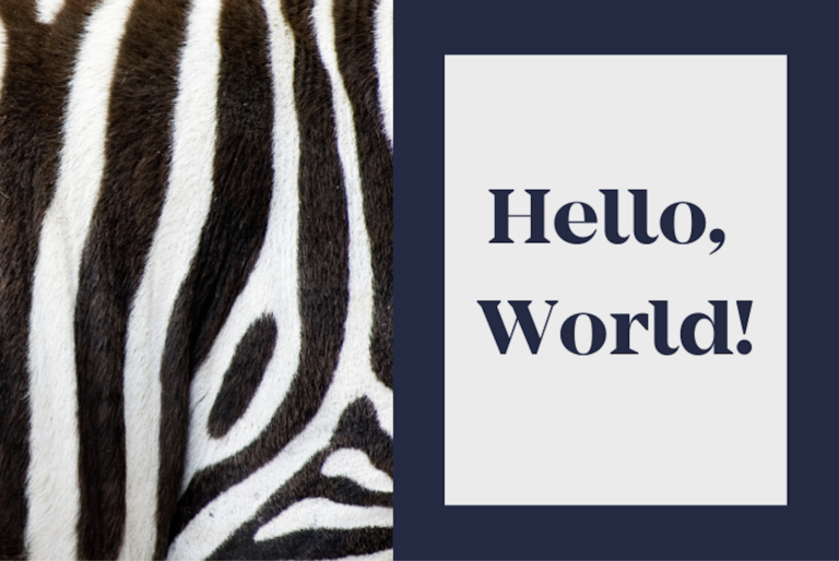 Hello World! Introducing MediFind